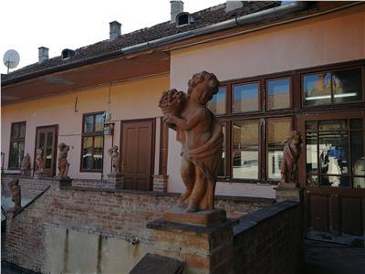 Spatiu comercial / birouri de vanzare Sibiu