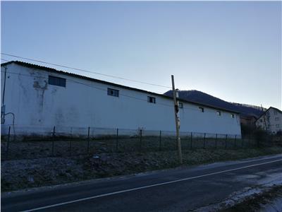 Hala industriala de  inchiriat  in Cisnadie