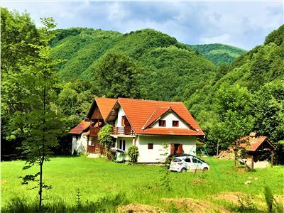 Casa de vanzare Valea Lotrioarei